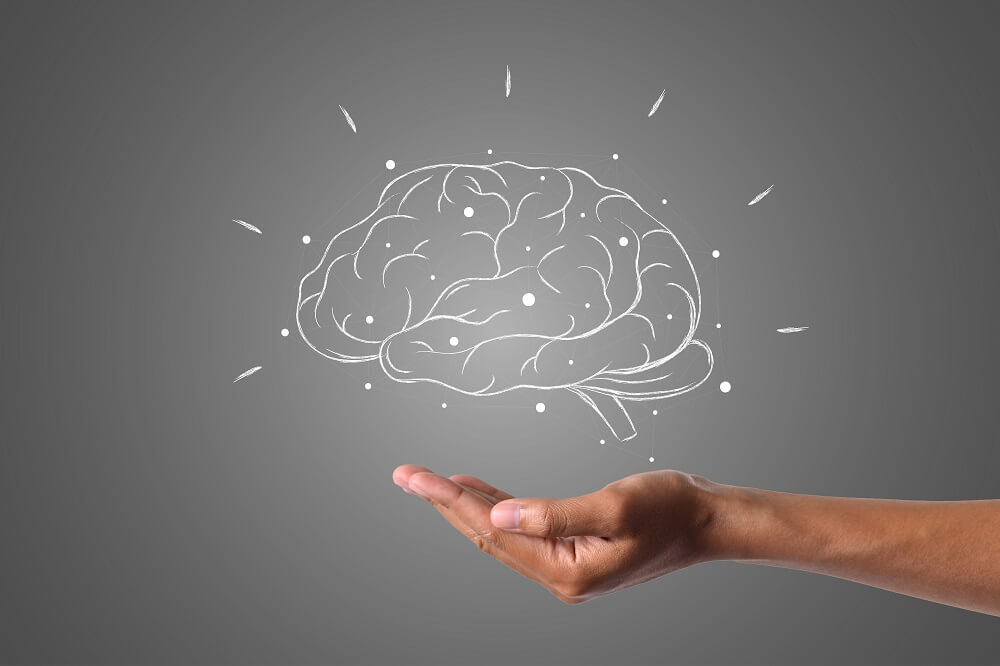 להרגיש עם המוח